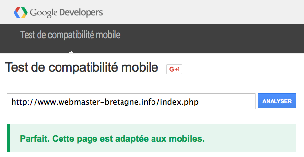 Le résultat du test de compatibilité Google Mobile Friendly